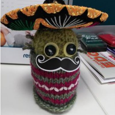 Mexican Buddy by Louise Howard